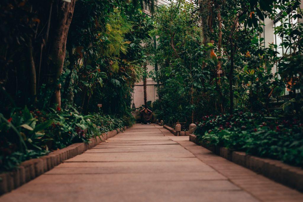 Botannical Garden