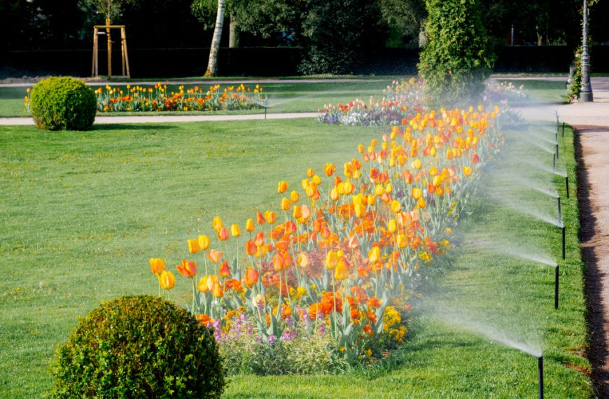 Fond of Your Garden? Here's How to Make It More Beautiful